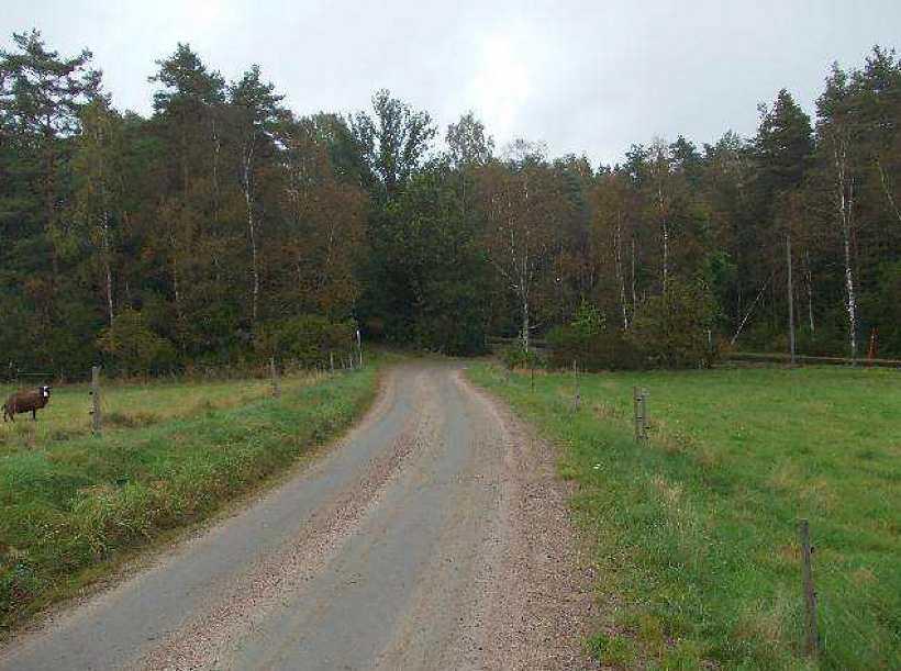 Fördes hit. Till den här platsen utanför Ljungby fördes den kidnappade 23-åringen innan han misshandlades och pressades på information.