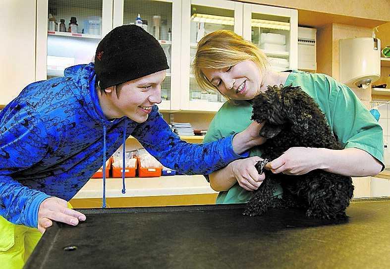 """Rikard Arnell, 20, och Pernilla Mähler, 20, med dvärgpudeln Dojjan. Rikard har varit arbetslös sedan i januari: """"Jag söker jobb, byter panel åt svärmor på huset, joggar och går ut med hundarna."""""""