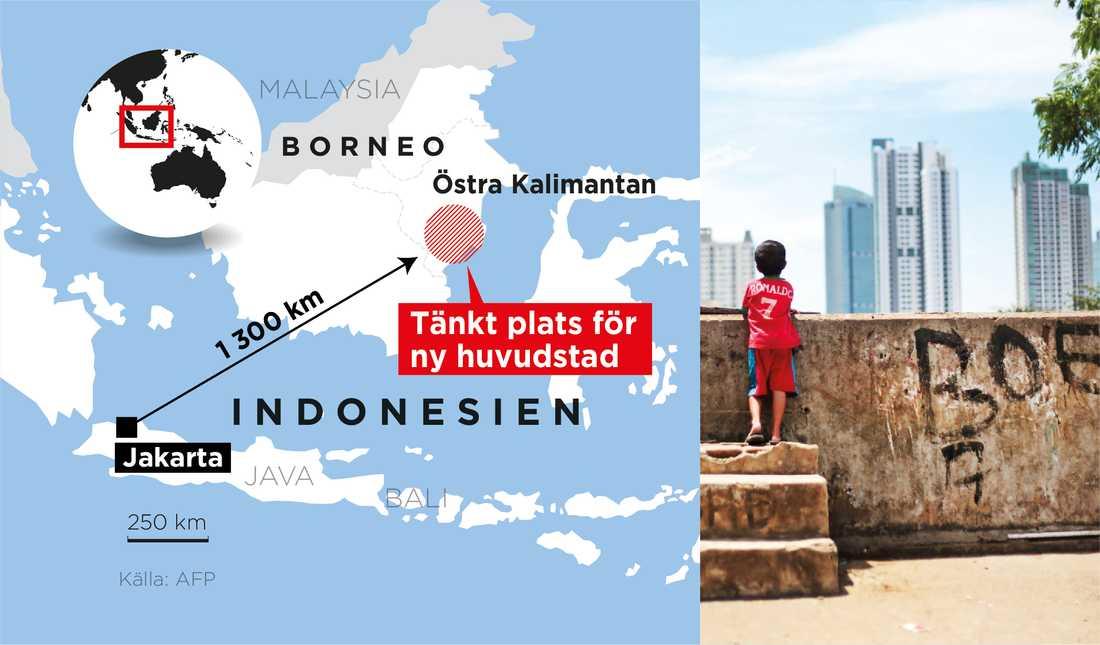 Den nya huvudstaden ska anläggas i den östra delen av Kalimantan, som är namnet på den indonesiska delen av ön Borneo som landet delar med Malaysia och Brunei.