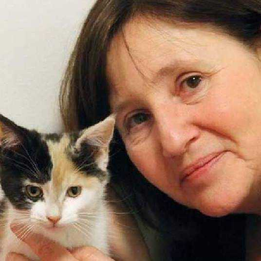 Ewa Edström, vice ordförande i föreningen Stockholms katthem