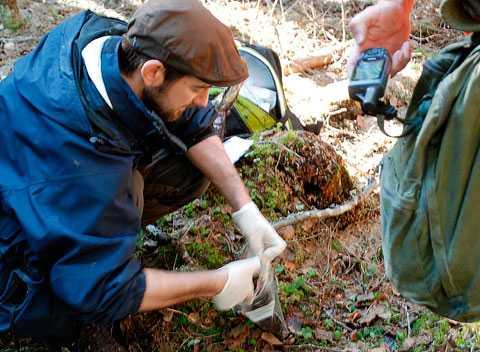 Polisens tekniker analyserar platsen där Tajson hittades.