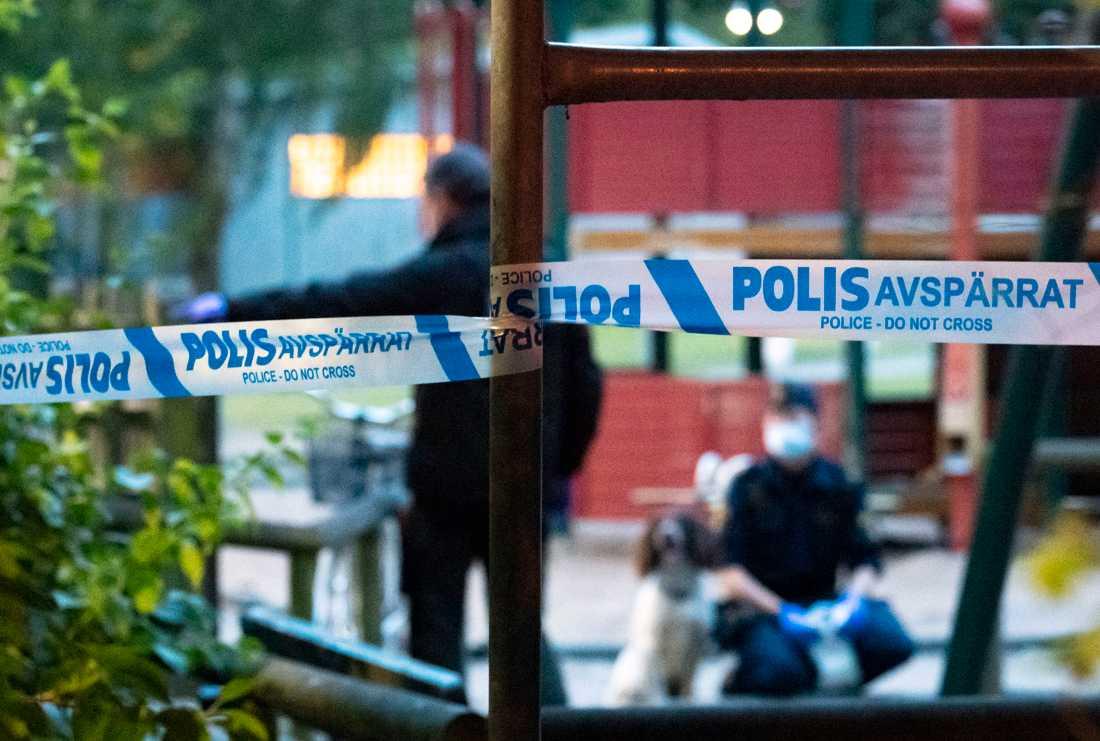 Polisen jobbar efter en misstänkt skottlossning i Malmö tidigare i juni. Gängkriminalitet debatteras nu i riksdagen.