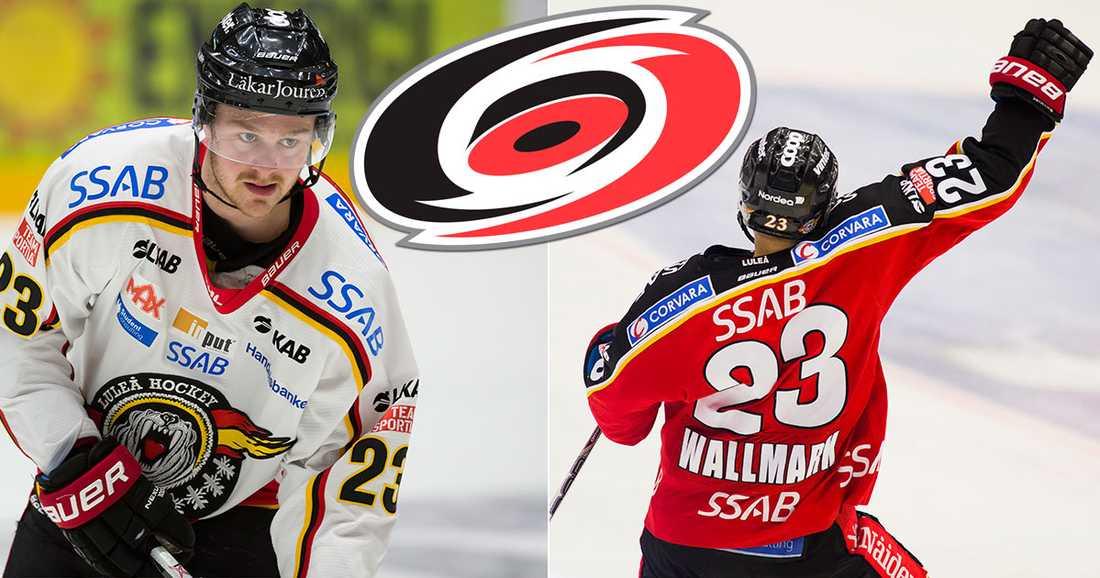 Lucas Wallmark kommer sakna Luleå – men har siktet helt inställt på Nordamerika i höst.