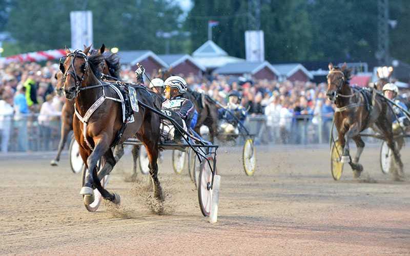 Quid Pro Quo och Ulf Ohlsson vann SprinterMästaren i fjol. I år kommer tävlingarna kryddas med en extra V75-omgång.