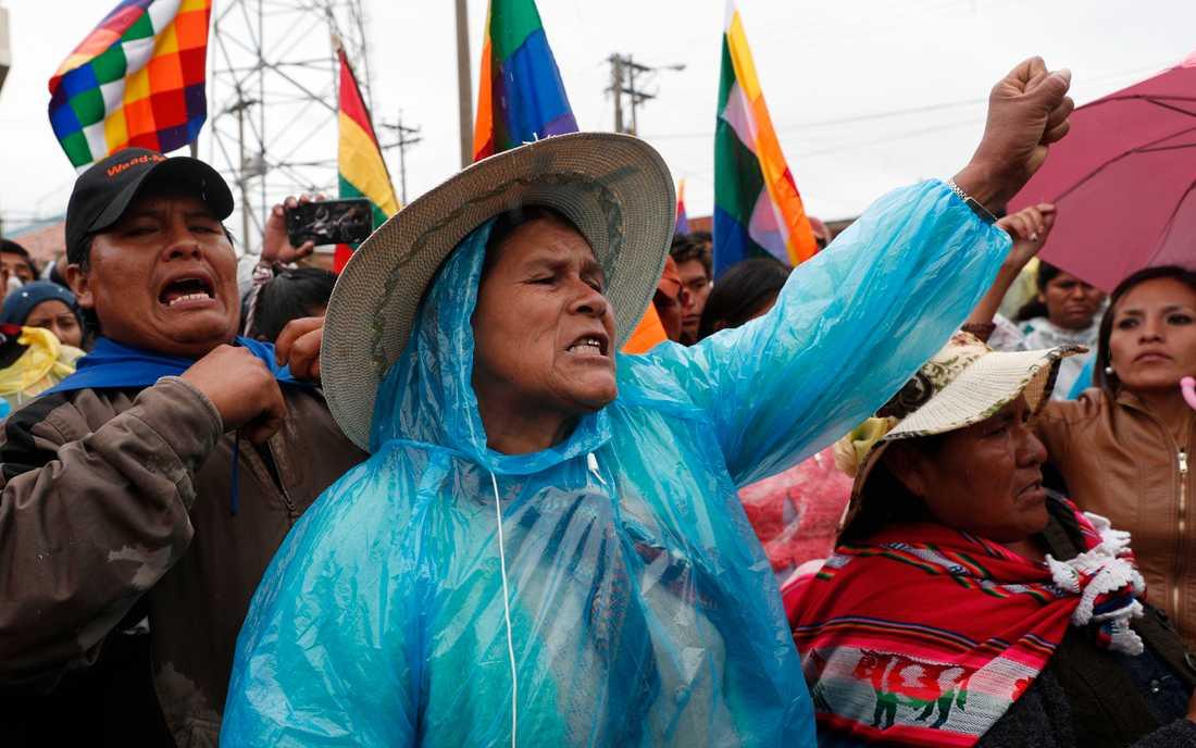 Anhängare till avgångne presidenten Evo Morales demonstrerar i Bolivia.