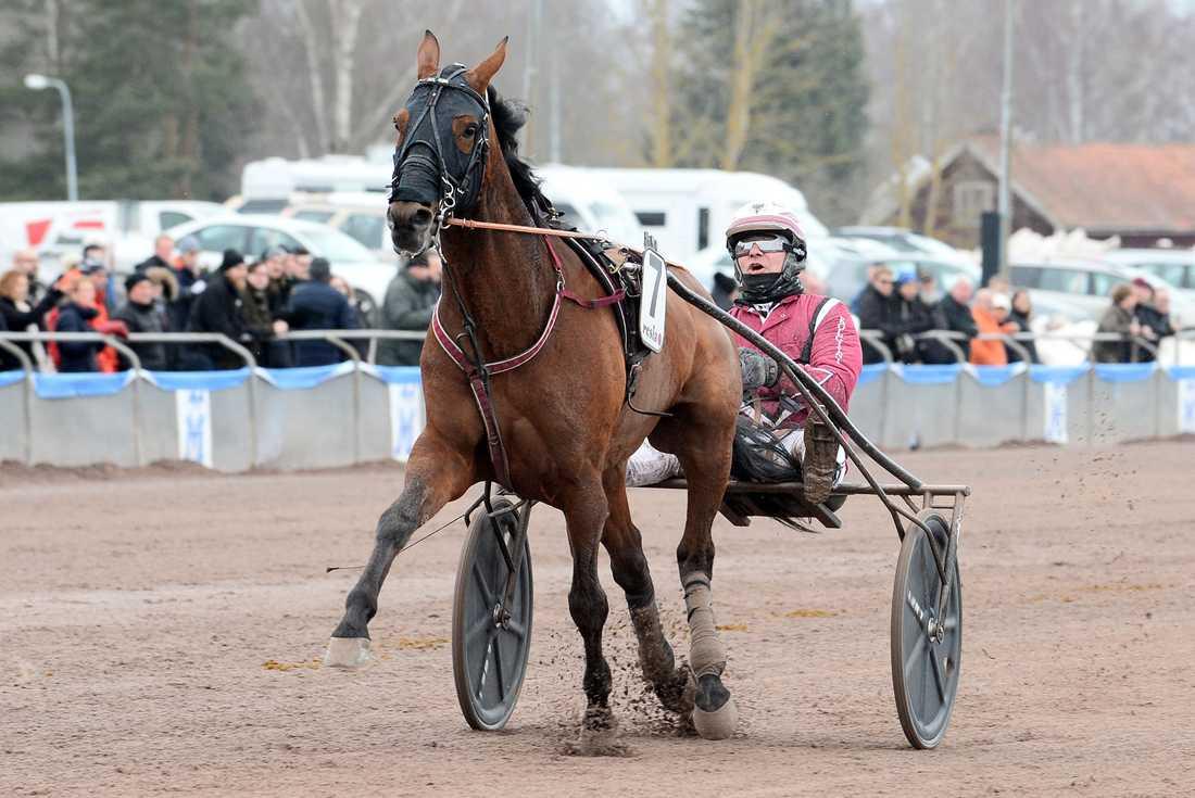 Lutfi Kolgjini och Platon Face vann V75–1 på Mantorp.