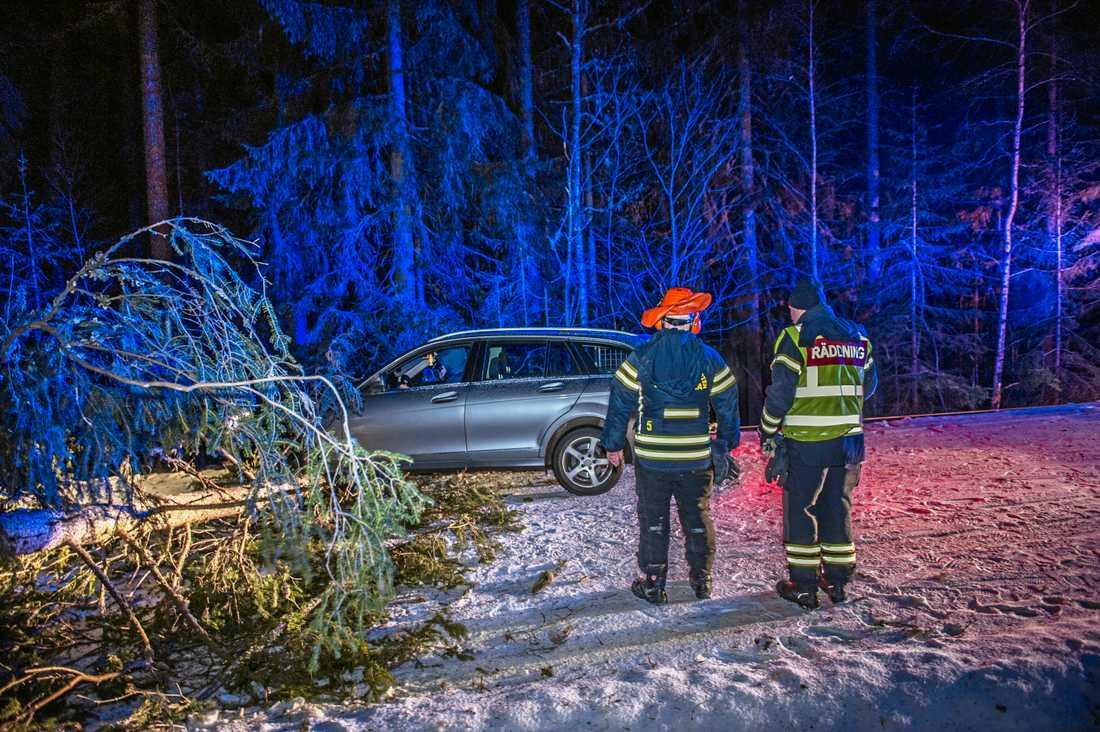 På länsväg Pålsbrenning i Hedemora krockade en personbil med träd som fallit över vägen.