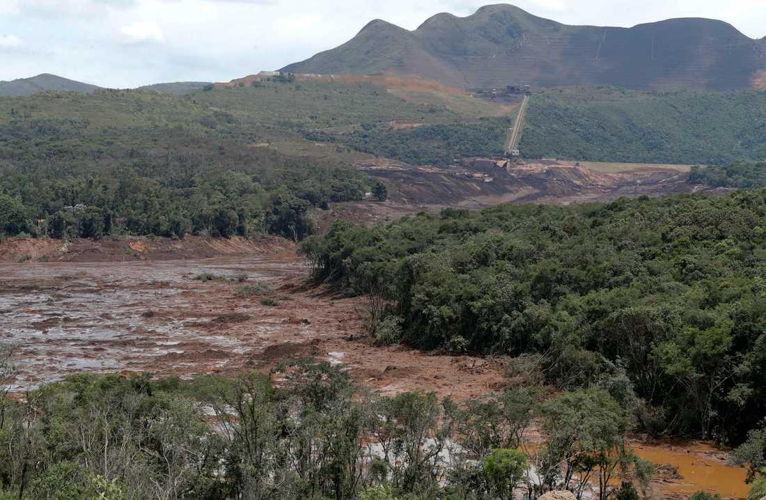 Förödelse där dammen kollapsade i Brasilien i januari i fjol. Arkivbild.