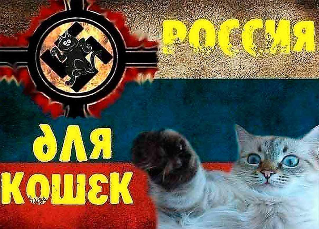 """Skämtsajten """"Ryssland åt katterna!"""" – en av 80000 länkar som blockeras."""