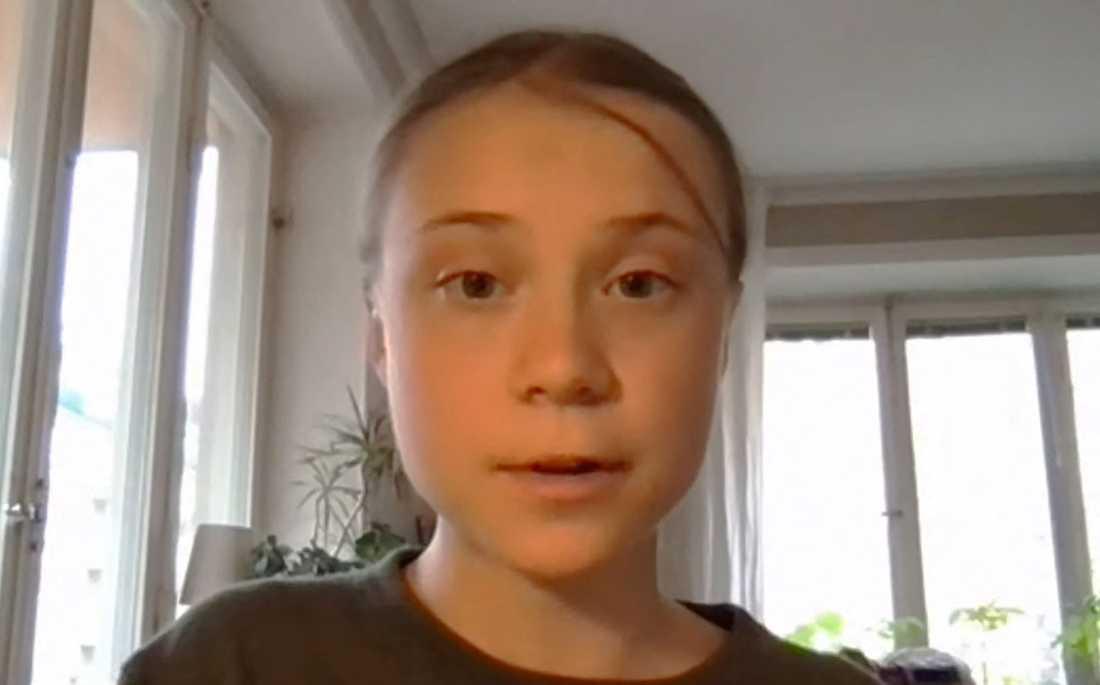 Fridays for future-grundaren Greta Thunberg talar till ett utskott i USA:s representanthus.