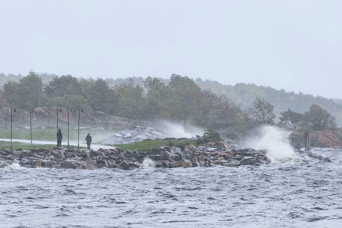 Kuling på Östersjön och blåst med blötsnö i Jämtlandsfjällen. Det är mycket november nu. Arkivbild.