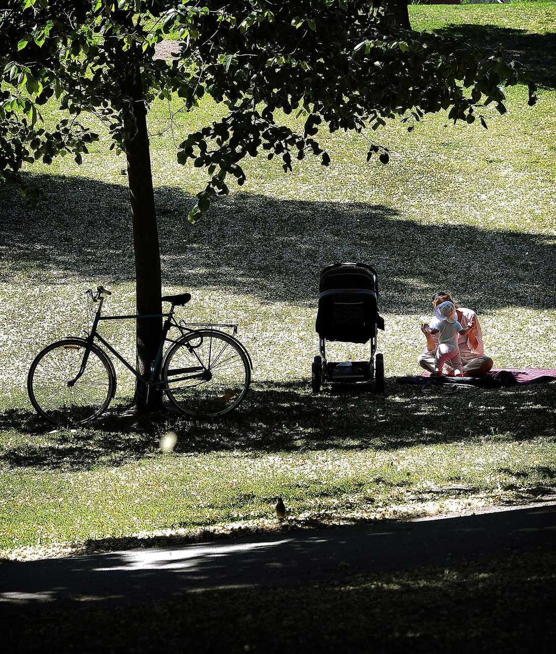 FÖRÄNDRADE BOENDEMÖNSTER Det är inte längre självklart för familjer att söka sig till förorten när de får barn. Det ställer därför högre krav på städerna att bli mer barnvänliga. Ett sätt är att skapa fler grönområden, som det här i Vasaparken i Stockholm.