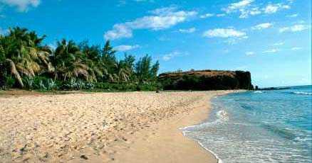 Den franska ön Réunion i Indiska oceanen har drabbats svårt.