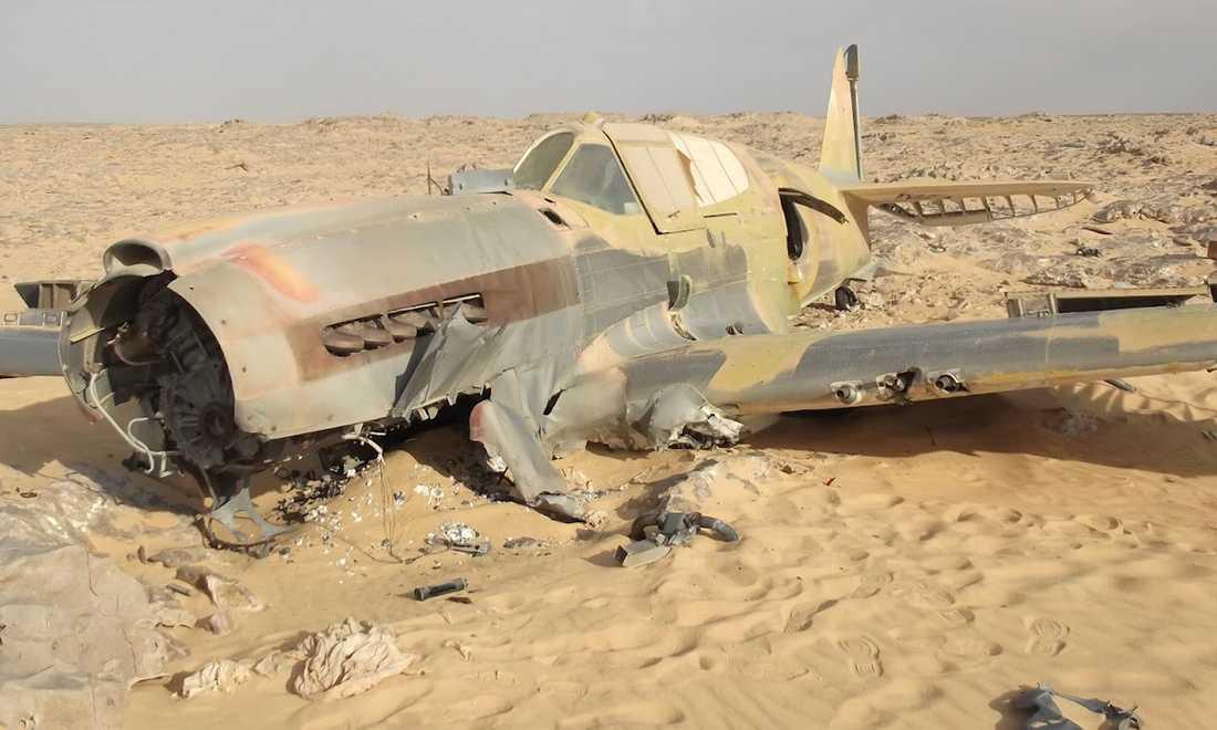 Flygplanet av modell Kittyhawk P-40 från andra världskriget upptäcktes av en slump av ett polskt oljebolag.