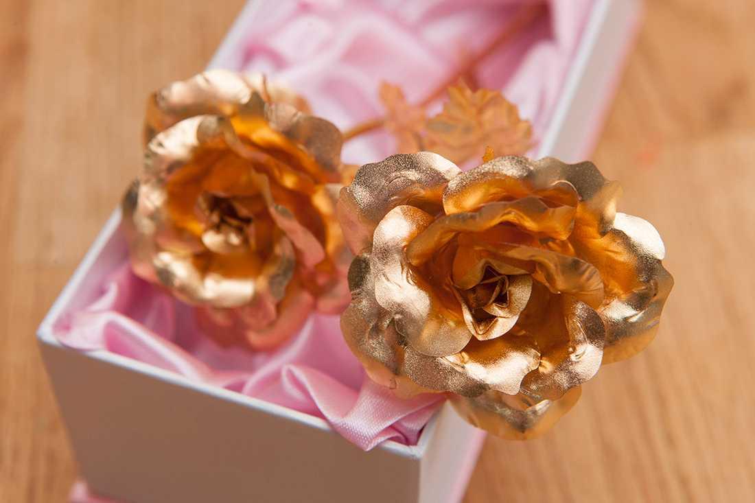Men rosorna var enligt Hanna uppenbart konstgjorda. De två exemplaren var exakt likadana. De hade en gjuten söm efter gjutningen av plasten i stjälken och bladen var gjorda av aluminium.