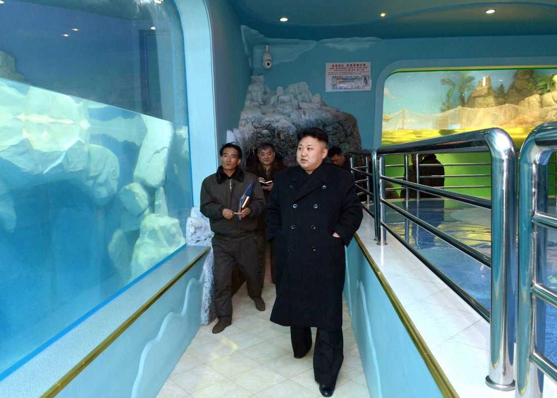 Kim Jong-Un tittar på fiskar.