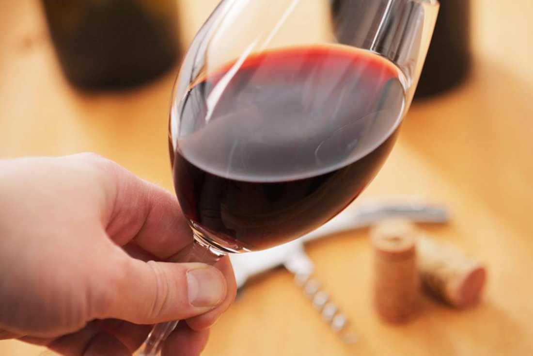 Strejken på Robertson Winery har pågått sedan slutet på augusti. De anställda vill ha en lön som går att leva på, och anständiga villkor på jobbet.