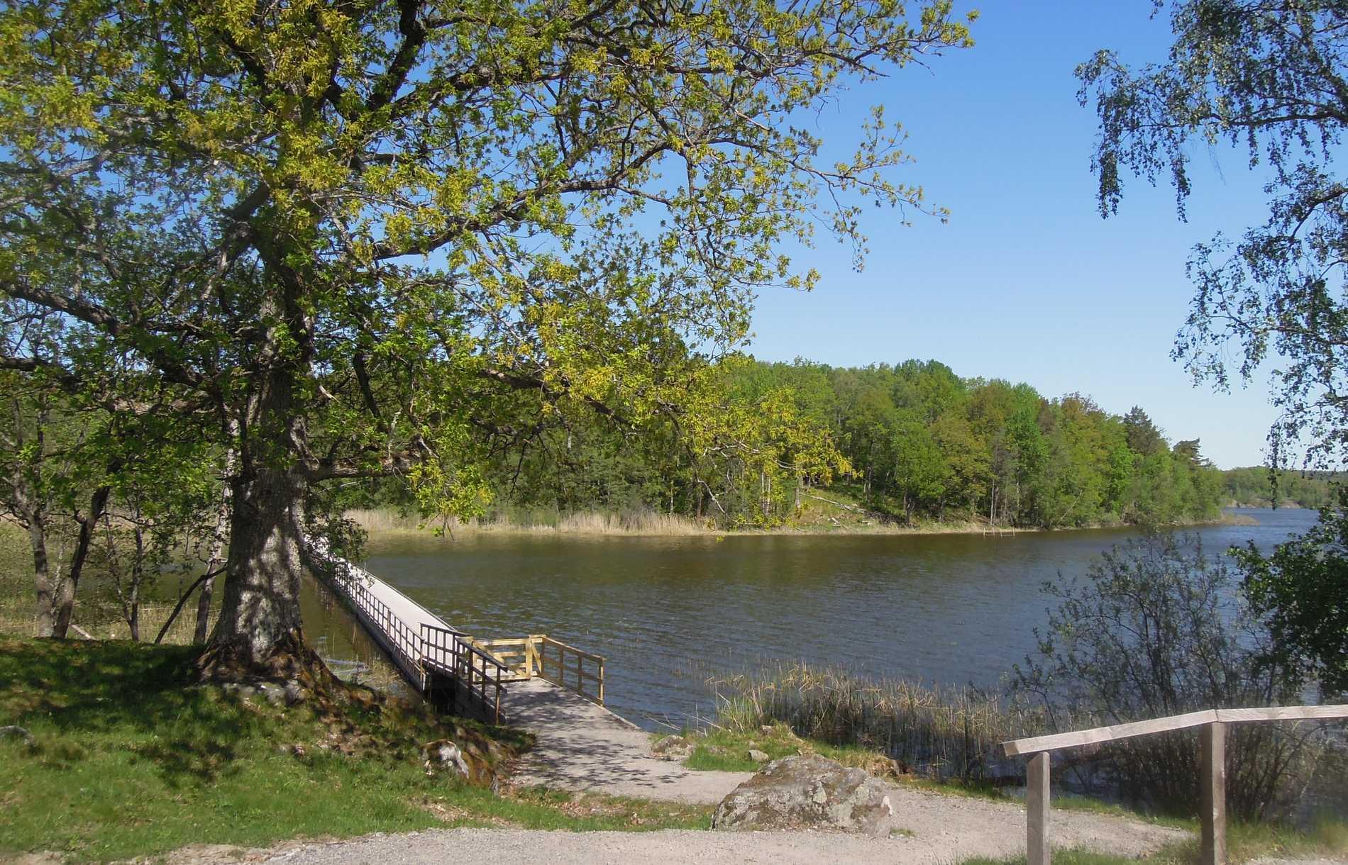 Sundby och Orlångens naturreservat