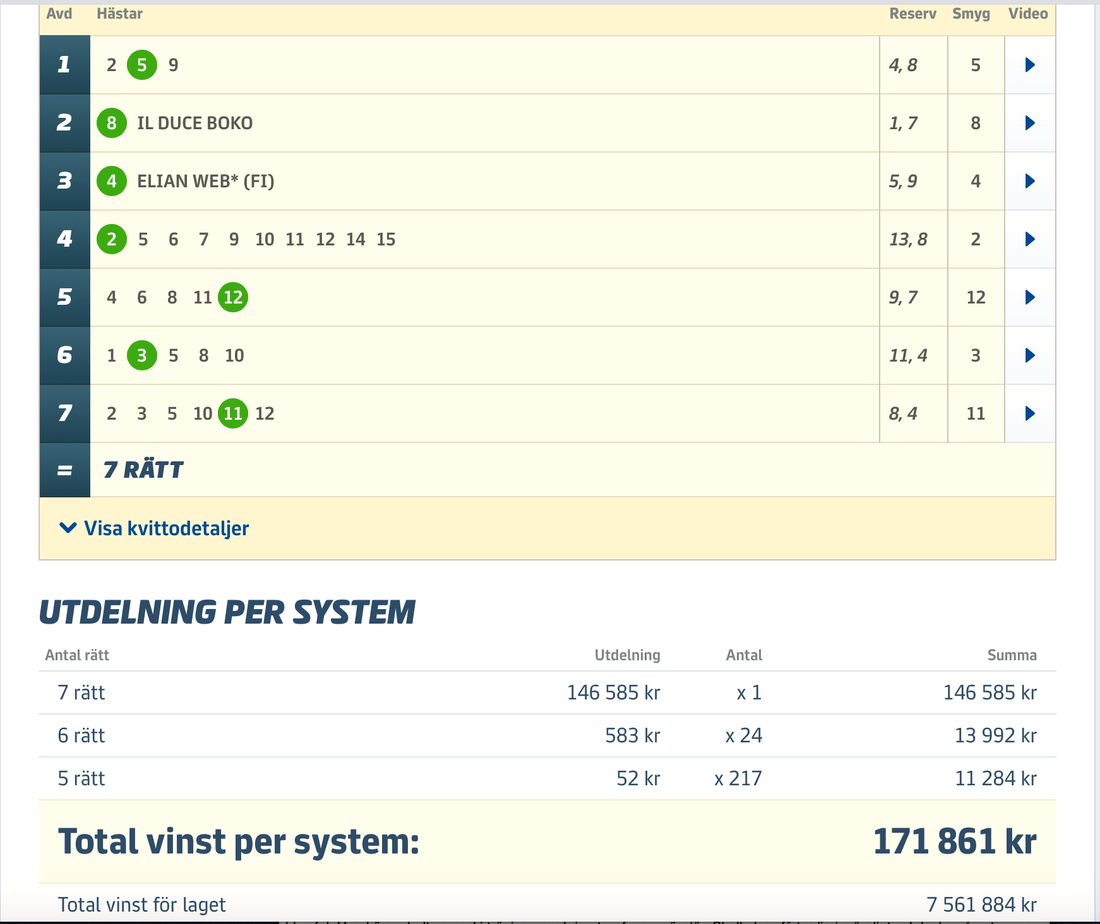 Joakim Widén drog in över 7,5 miljoner på V75