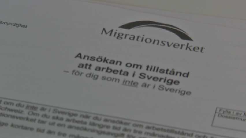 Migrationsverkets blankett för ansökan om arbetstillstånd.