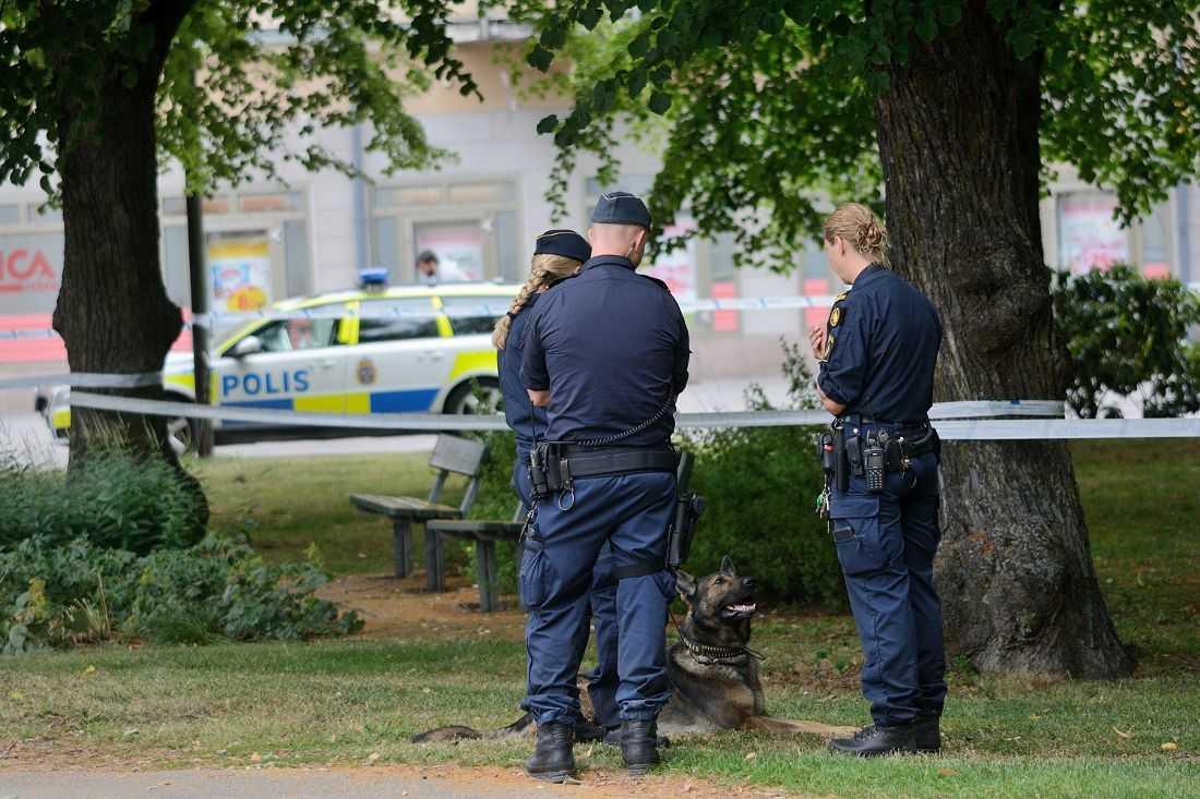 32-åriga Anette Idestål fick ögonkontakt med misstänkte gärningsmannen, då flydde han.