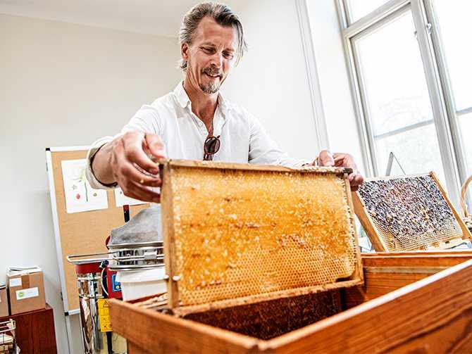 Odling och bin hör ihop. – Det blir mycket honung på bara tvåkupor, omkring två kilo per ram, berättar Paul Svensson.