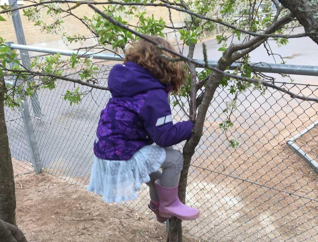 Victor Penas dotter illustrerar hur hon tog sig ut från förskolan.
