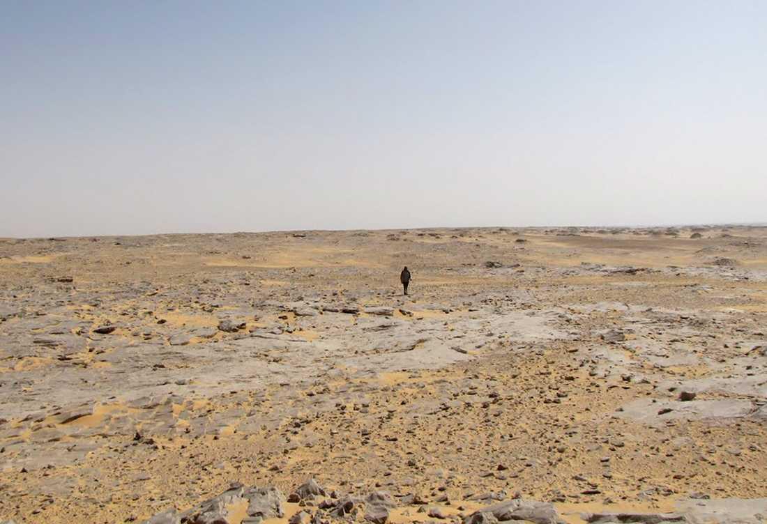 Den del av Saharaöknen där planet hittades, långt från civilisationen.