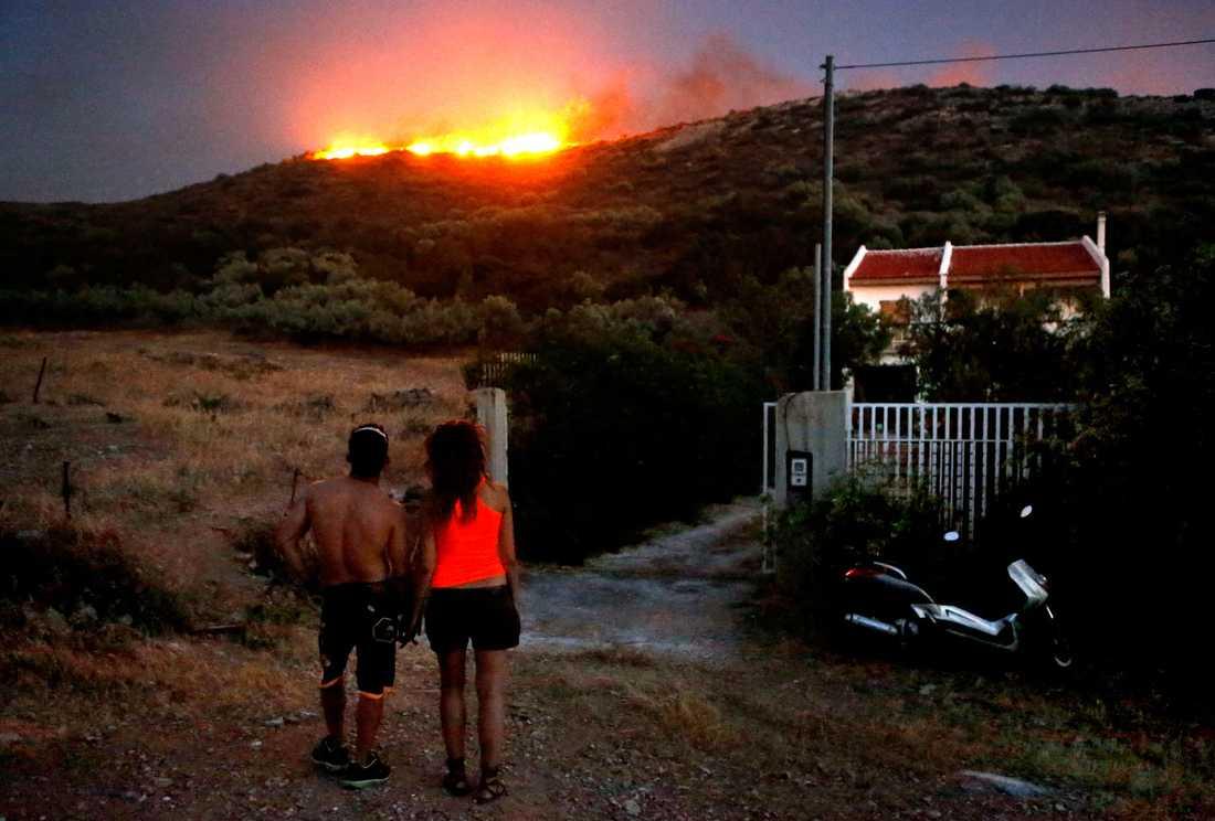 Beonde tittar på elden vid byn Thymari 4 mil sydöst om Aten.