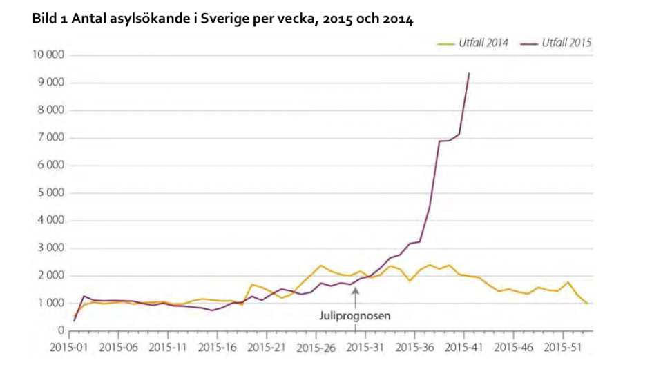 Grafiken visar antalet asylsökande per vecka.