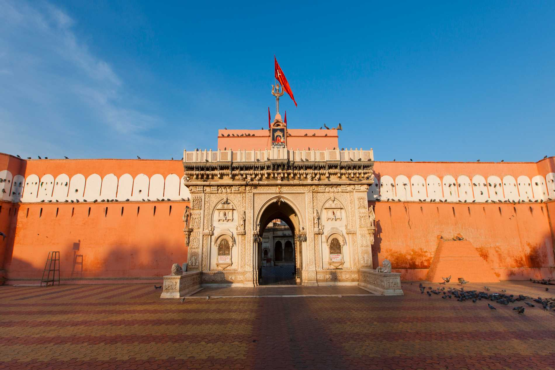 Karni Mata är ett aningen udda tempel.