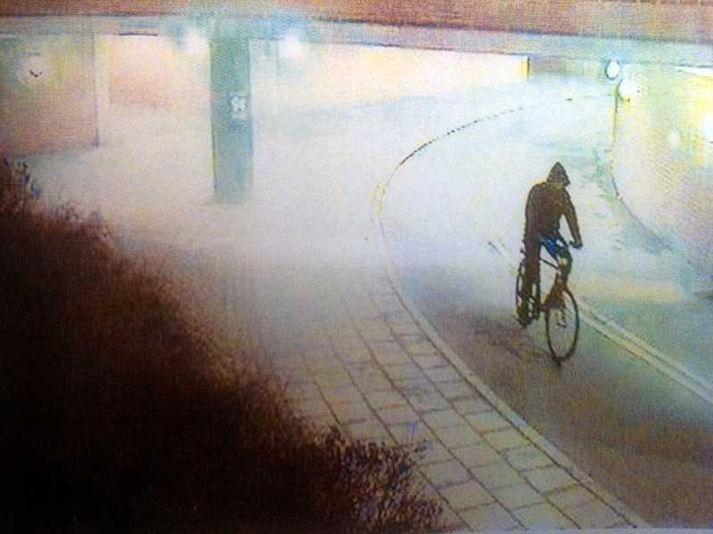 Bild ur polisens förundersökning. Mannen cyklade efter slumpvis utvalda kvinnor och överföll dem.