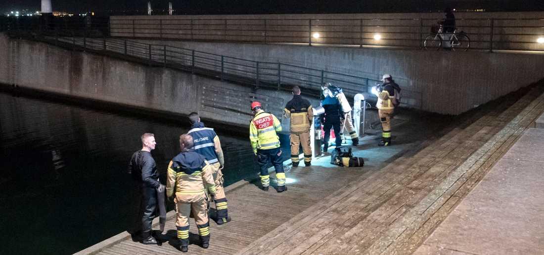 Polis och räddningstjänst på plats vid Sundspromenaden i Malmö den 8 november. Det började med ett drunkningslarm och slutade med en anmälan om djurplågeri och skadegörelse.