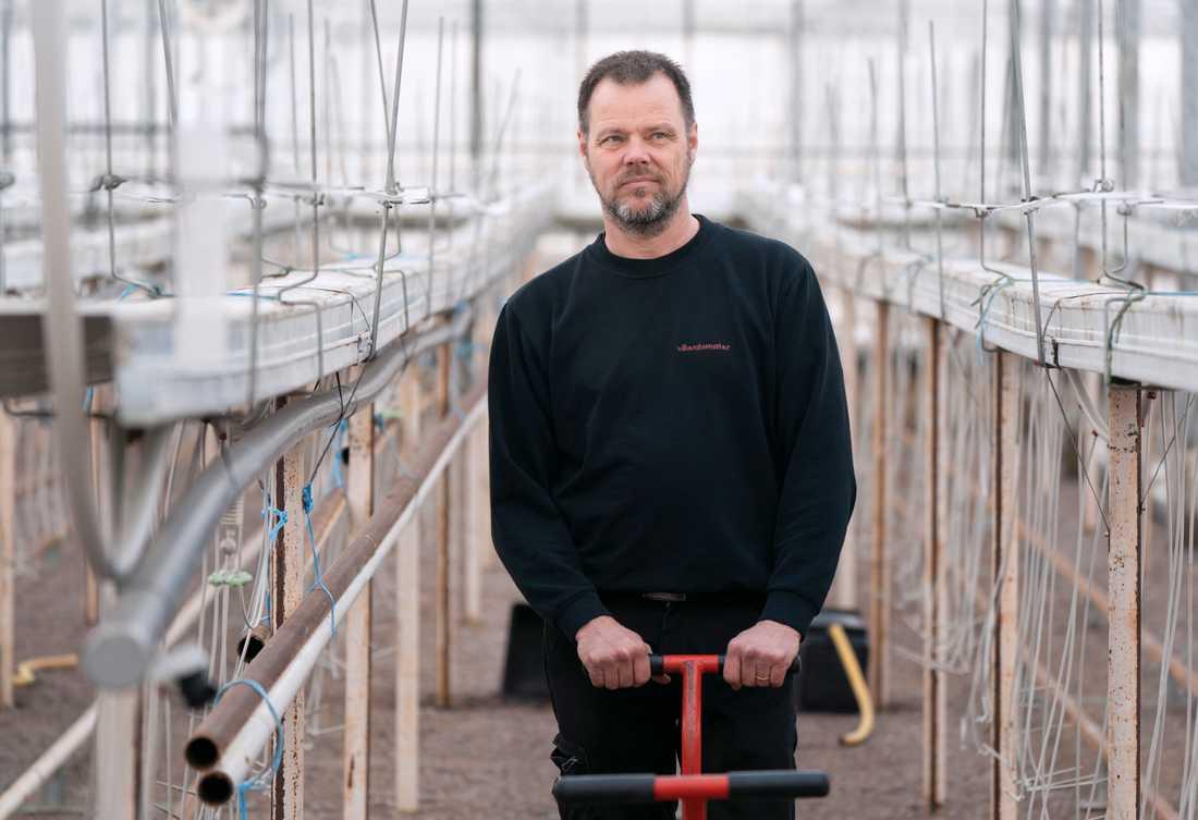 Mats Olofsson på Vikentomater utanför Höganäs – med 33 säsongsanställda och en produktion på runt 250 ton specialtomater per år – förlorade i våras stort när restaurangernas inköp försvann i spåren av corona.