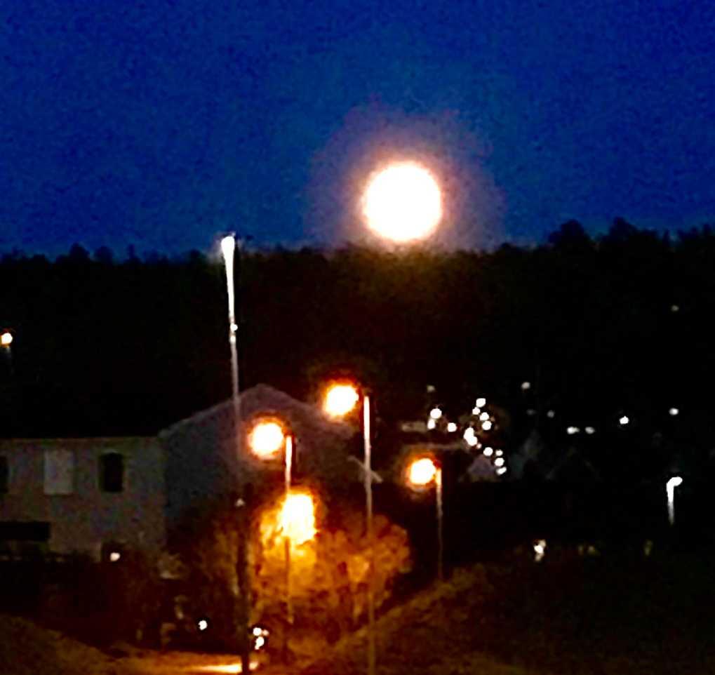 En läsare i Järfälla hälsar att månen såg väldigt stor ut på himlen.