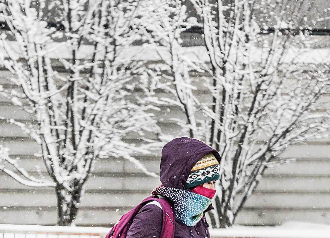 Vinterkallt i Stockholm på onsdagen.