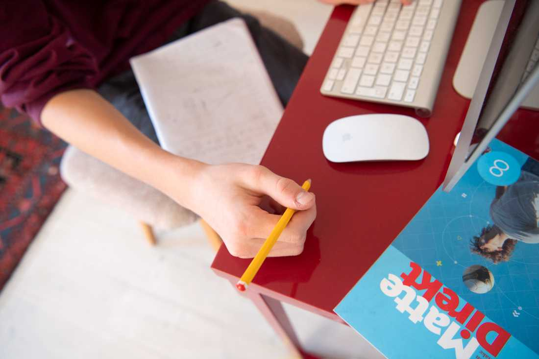 Från klassrum till vardagsrum. Skolinspektionen följer upp hur skolorna får distansundervisningen att fungera. Arkivbild.