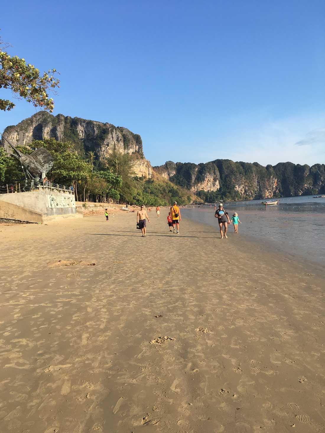 Familjen blev attackerad av hundflocken på Ao Nang beach i Thailand.
