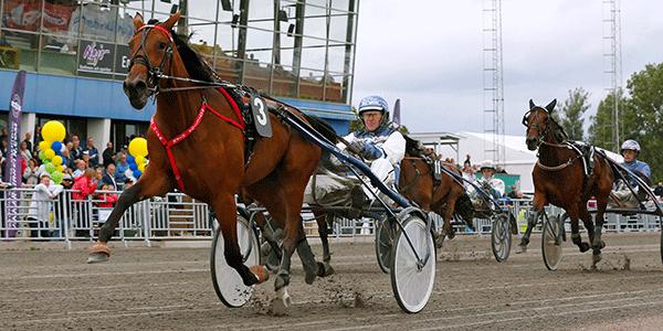 Mascate Match visade att hon är kullens bästa häst.