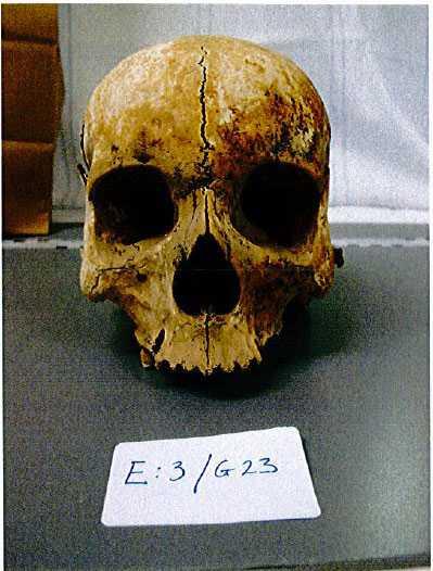 En skalle som hittades hos kvinnan.