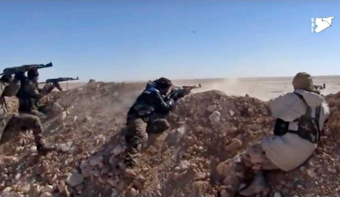 Soldater från rebellgruppen SDF skjuter mot Islamiska staten utanför al-Raqqa.