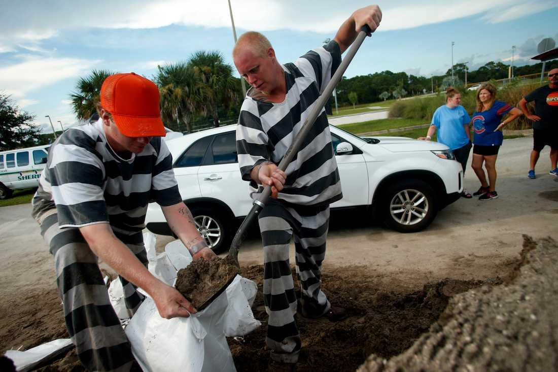 Interner hjälper till att fylla sandsäckar i Meritt Island, Florida.