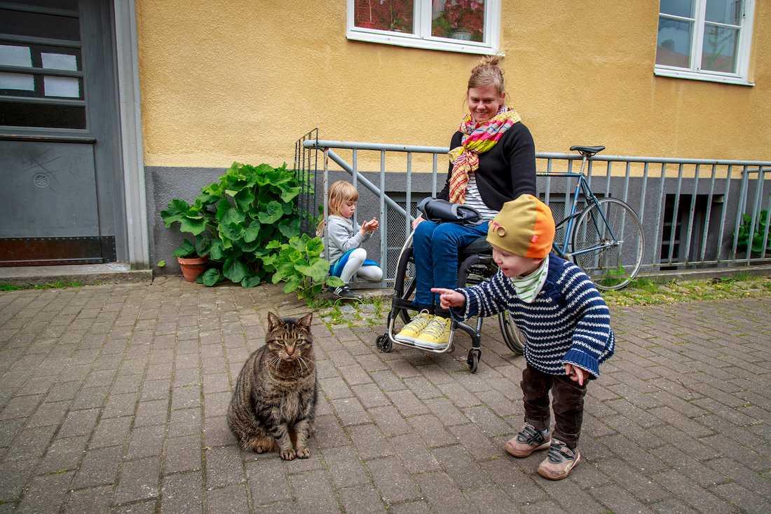 Otto, 1,5, blir förtjust när han får syn på katten.
