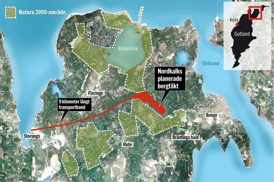 Miljön hotad På grund av en ändrad lag fick Nordkalk tillstånd till att avverka i Ojnareskogen på Gotland. Demonstranter kan finnas kvar i träden men det hindrar inte företaget från att fortsätta.