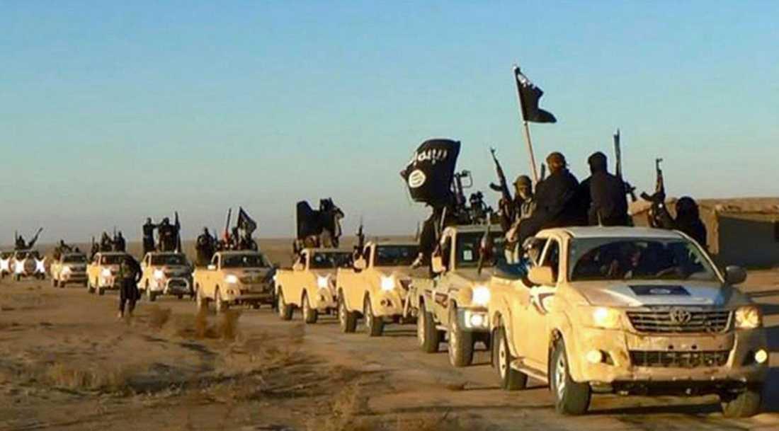 IS-terrorister på en arkivbild utanför Raqqa strax efter att de intagit staden.