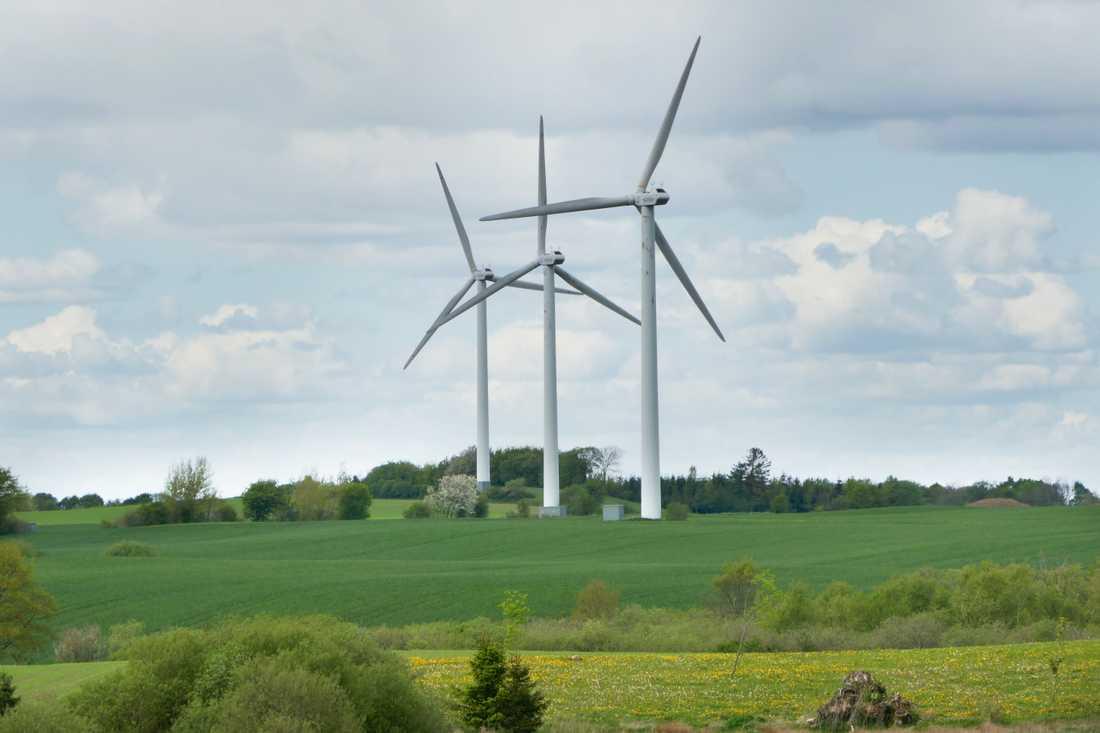 Vindkraftverk på Jylland i Danmark.