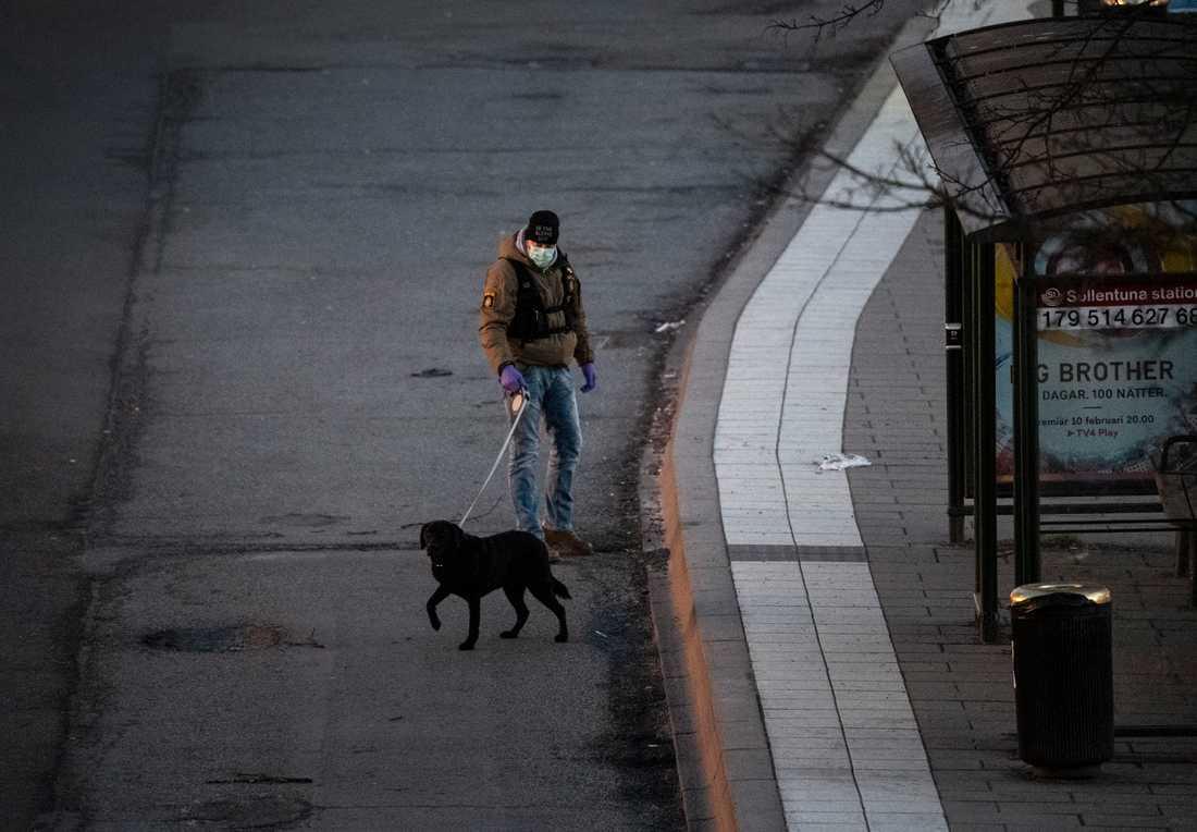 Polisen letar på brottsplatsen med hund.