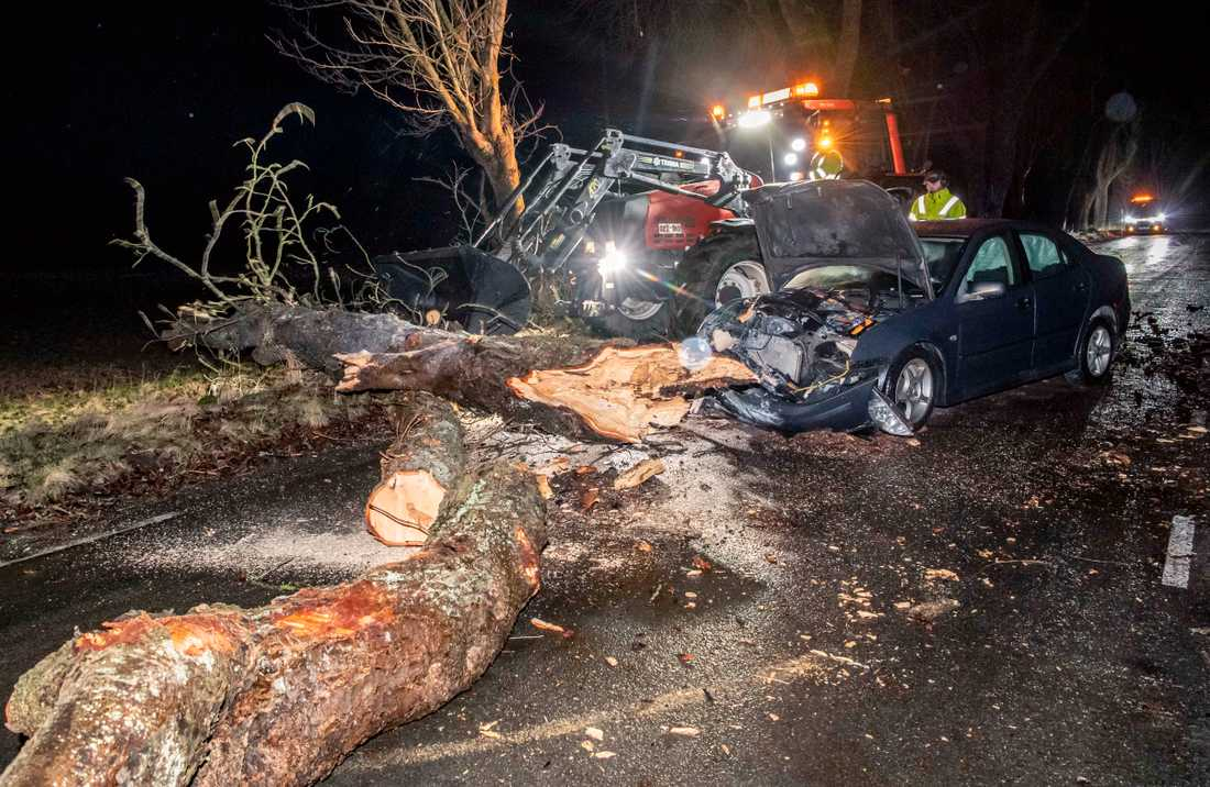 En personbil körde under söndagskvällen in i ett träd som rasat ner över vägen i Kristianstad.