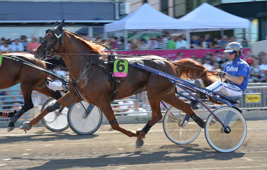 Caballion vann Copenhagen Cup 2014 men fråntogs segern då hästen testades positivt för dopning.