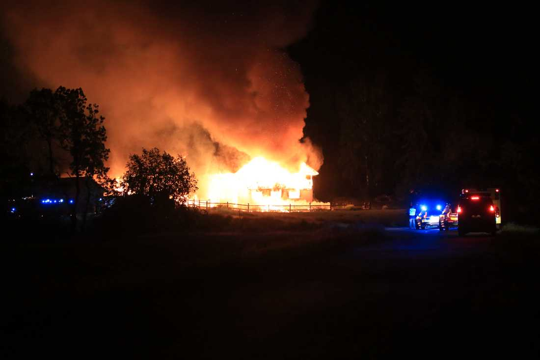 I en lada i Uppsala brann fem hästar inne.